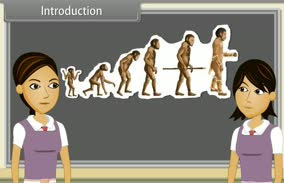 Heredity And Evolution-I (10th Grade Biology)