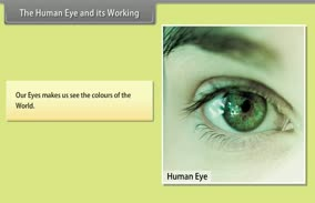 Human Eye And Colorful World:The Human Eye And Its Working