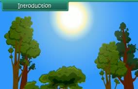 Natural Changes (4th Grade EVS)