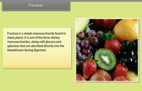 Biomolecules: Fructose