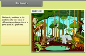 Biodiversity and Conservation: Biodiversity