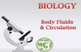 Body Fluids and Circulation: Assessment